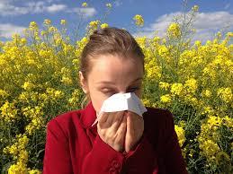 allergia-images