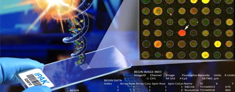 Molecular MicroArray